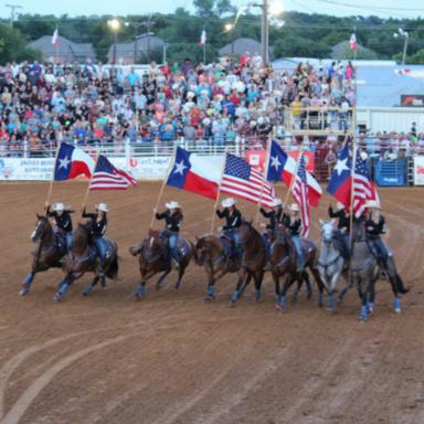 no tex fair -rodeo graphic2.png